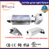 Le ballast de la serre chaude 2*315W CMH Digitals élèvent l'appareil d'éclairage pour la lampe de HPS/CMH