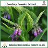Extrait de poudre de consoude du Symphytum Officinale/de nature avec Shikonin 30%-98%
