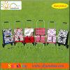 Fördernder Einkaufen-Laufkatze-Beutel (XY-409B)