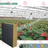 Garniture de refroidissement lavable Noir-Enduite personnalisée pour la serre chaude de fleurs