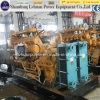 힘 Engine 천연 가스 (생물 자원 가스 /biogas) Gas Generator