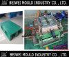 Plastikladeplatten-Form, Einspritzung-Ladeplatten-Form, Form-Fabrik