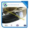 G I Binding WireかBlack Anealed Wire (Bwg8-Bwg22)