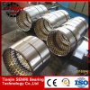 Todo o Types de Bearing Sizes 95*145*37mm, Cylindrical Roller Bearing Nj1019m