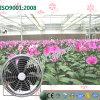 Tipo redondo energy-saving ventilador de refrigeração para o vegetal que planta estufas