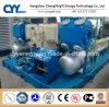CNG18によってスキッド取付けられるLcng CNGの液化天然ガスの組合せの給油所