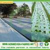 Tessuto non tessuto Anti-UV del coperchio pp di agricoltura in rullo