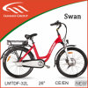 250W Brushless Motor Electric Bicycle