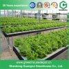Estufa comercial solar do Hydroponics para a agricultura
