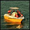 Heißes verkaufenFRP Fischerboot