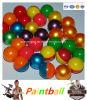 Kleurrijke Ronde die Paintballs met Pin voor OpenluchtSporten wordt gemaakt
