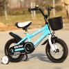 Caçoa a bicicleta da cor e do projeto/bicicleta bonitos das crianças