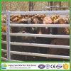 Panneau galvanisé bon marché en gros de corral d'économie d'IMMERSION chaude pour des bétail