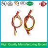 La alta calidad de la fuente de la fábrica modifica la asamblea de cable para requisitos particulares electrónica