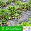 Frucht-Abdeckung-Insekt-Schutz-Gemüse-Winter-Schutz-Frost-Abdeckung