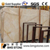 Spider dorato Marble Tiles per Wall e Floor