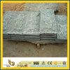 Wallのための自然なSplit G612 Green Granite Mushroom Stone Tile