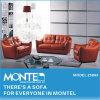 現代居間のソファー、革ソファーセット、ホーム家具