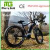 6061 AluフレームのEbike 48V 350Wの脂肪質のタイヤの電気バイク