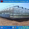 Estufa de vidro brandnew para a coberta da venda feita em China