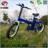Bateria de lítio elétrica Foldable da bicicleta do freio de disco da E-Bicicleta de En15194 350W