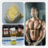 Nandrolone stéroïde injectable de Liqiud 360-70-3 de gain de muscle Decanoate/Deca (200mg/250mg/300mg/ml)