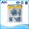 PVC Blister Packing Screws, Washers und Nuts Kit