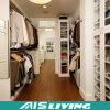 가정 가구 침실 벽 옷장 옷장 디자인 (AIS-W297)