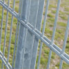 Alta qualità & Low Price Doppio-Wire Welded Fence Made in Cina