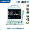 Máquina veterinária do ultra-som de Duoppler da cor Ysd350