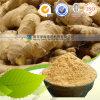 自然な有機性100%年のショウガの粉