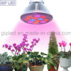 최고 Seller E27 12W LED Plant Grow Light