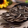 内蒙古の健康食品のヒマワリの種363