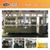Maquinaria de relleno caliente del jugo del estaño de la venta de Zhangjiagang
