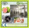 Machine van de Trekker van de Schroef van de guave de Verpulverende