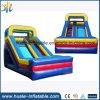 Juguetes inflables modificados para requisitos particulares del agua, diapositiva de agua inflable