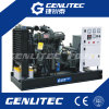 50Hz раскрывают тип генератор 10kw Weichai тепловозный до 200kw