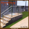 Trilhos ao ar livre de Rod da balaustrada dos trilhos do patamar do aço inoxidável (SJ-H1741)