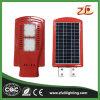 indicatore luminoso di via solare di disegno LED di vendite della fabbrica 30W nuovo