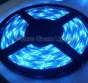 Luce di striscia blu del LED