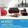 現代余暇のソファー、ホーム家具のソファーセット