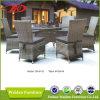 Rattan della mobilia del ristorante che pranza insieme (DH-6112)