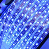 3528 SMD Strip Lights 110V Blue Color