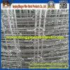 Fabriek van ISO galvaniseerde Duurzame Weide Filed Omheining