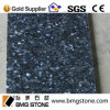 Stone naturale Blue Pearl Granite Floor Tile 600X600