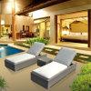 Salotto di alluminio della mobilia esterna del patio con la Tabella laterale