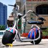 trotinette elétrico da roda grande da bicicleta dos Cocos da cidade fora da motocicleta elétrica da estrada