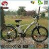 卸し売り250W電気マウンテンバイクMTBの自転車