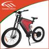 Aluの合金、ブラシレスの、後部モーター48V 1000W電気バイク