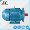 Ye2-160m-4 AC誘導電動機の電動機